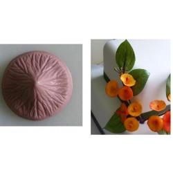 Chinese Hat, silikonveiner