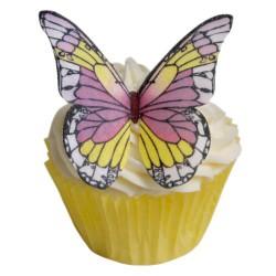 Wild Pansy, 12 st ätbara fjärilar