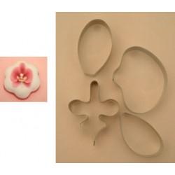 Phalaenopsis orkidé (cupcake size), 4 delar