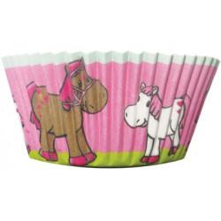 Hästar, 50 st muffinsformar