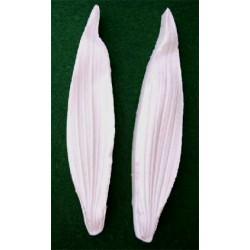 Alstroemeria S (bladveiner),  2 st