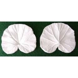 Pelargon, mellan (bladveiner),  2 st