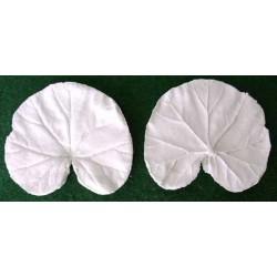 Pelargon, liten (bladveiner),  2 st