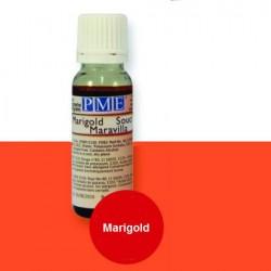 Marigold, airbrushfärg