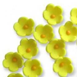 Gula blommor, ca 20 st
