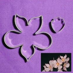 Java Orchid, utstickare