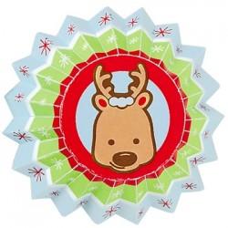 Snowflake Wishes, 100 st små