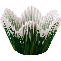 Grass Petal, 24 st