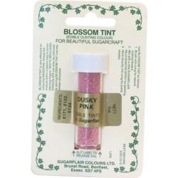 Rosa, pulverfärg (Dusky Pink - SC)